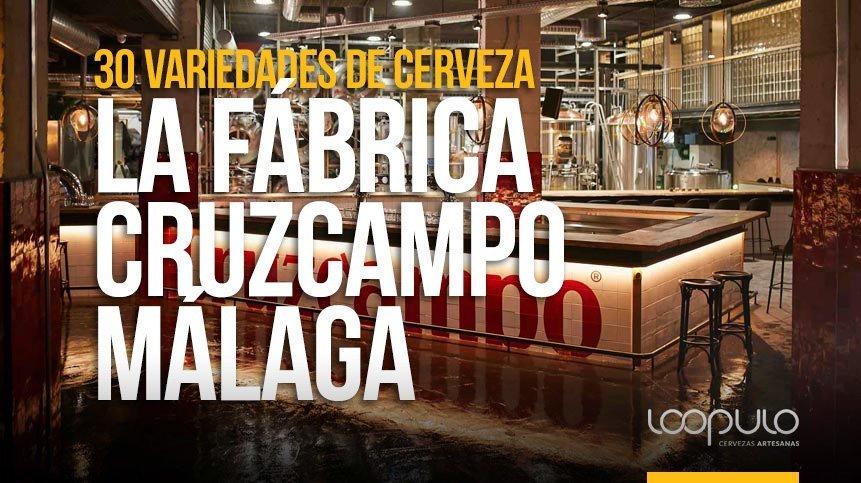 Fábrica Cruzcampo de Málaga cierra el año con 30 variedades de cerveza – Loopulo