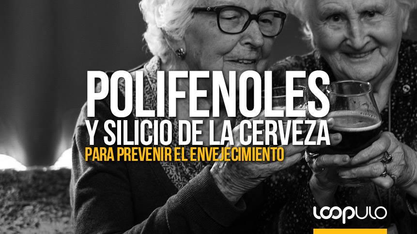 Polifenoles y silicio de la cerveza para prevenir el envejecimiento – Loopulo
