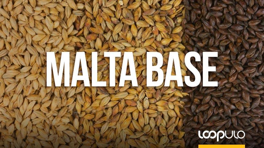 Maltas base, uno de los elementos más importantes – Loopulo
