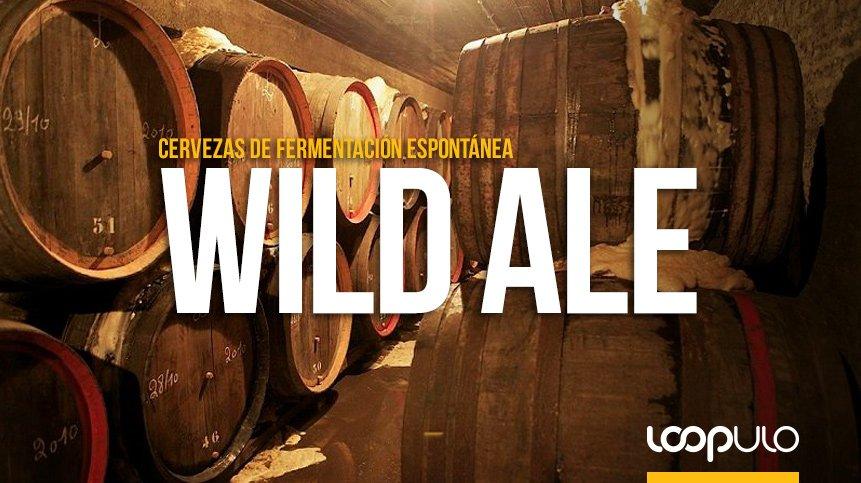 Wild Ale, los estilos de cerveza tras la fermentación espontánea – Loopulo