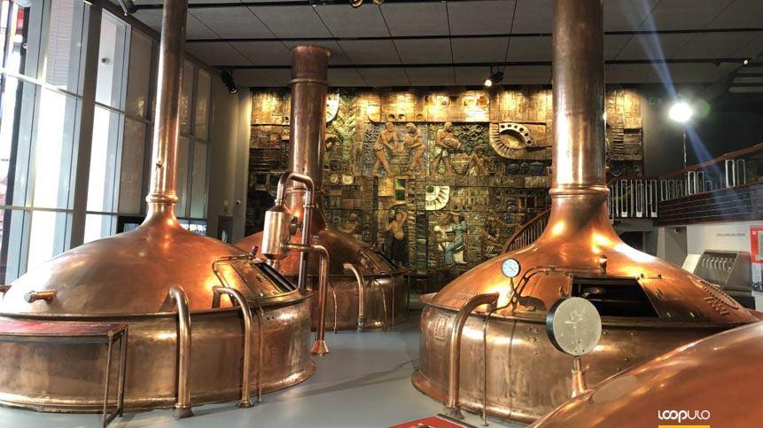 MEGA celebra el Día Internacional de la Cerveza – Loopulo