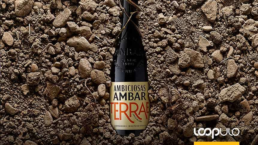 Ambar Terrae, una cerveza elaborada con lúpulo de viña – Loopulo