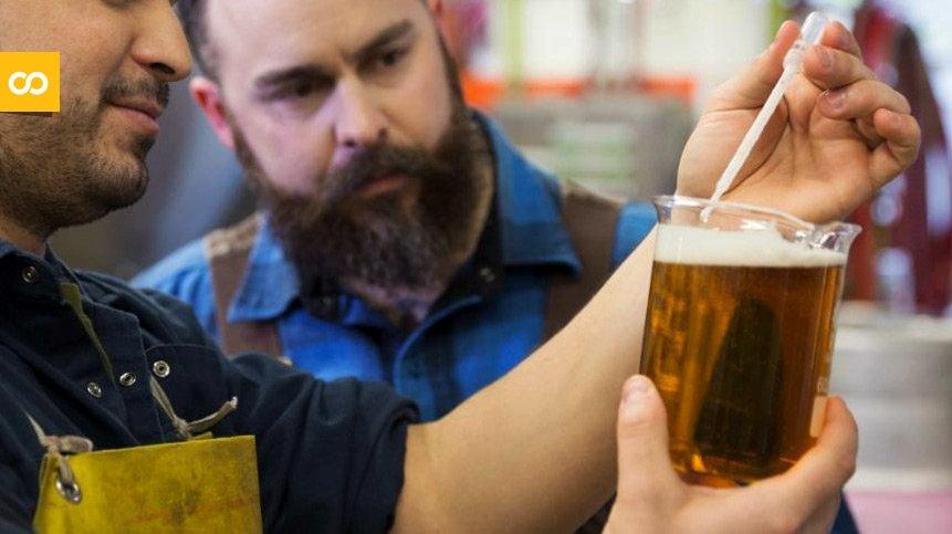 La importancia del pH del agua a la hora de elaborar cerveza   Loopulo