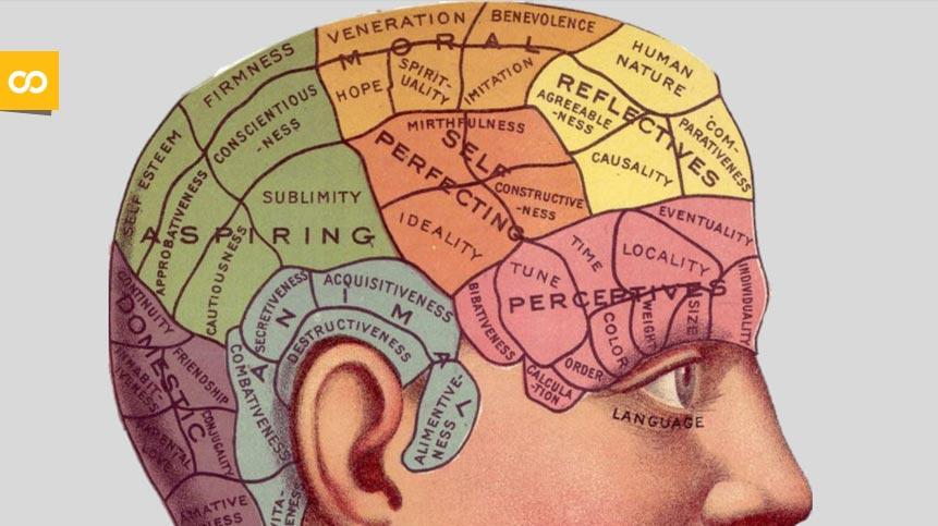 El consumo bajo o moderado de alcohol ayuda a mantener el cerebro más joven - Loopulo