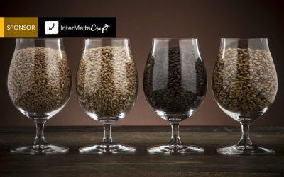 Las maltas más frecuentes en la elaboración de la cerveza