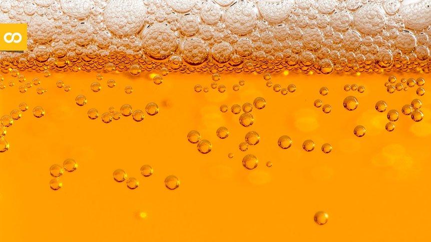 ¿Sabes cuántas burbujas tiene una cerveza? - Loopulo