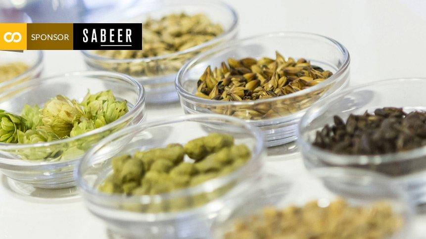 Cursos academia de la cerveza Sabeer - Loopulo