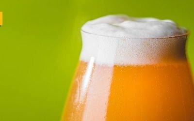 ¿Cómo se llama la espuma de la cerveza?